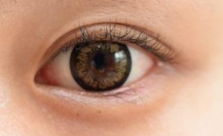 杏眼のイメージ