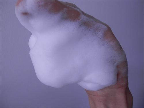 センシティブザイフの泡(逆さ)(リベンジ)